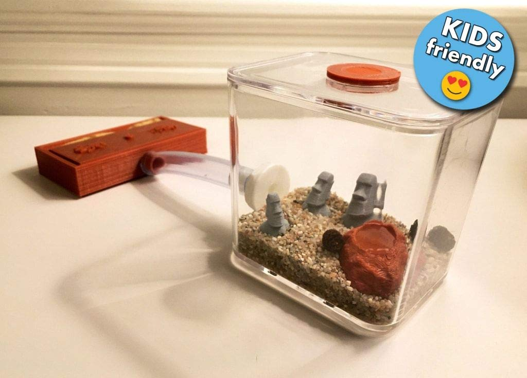 Small Desktop Ant Farm Kit/Formicarium Formica - Modular Ant Farm Kit
