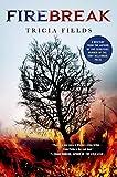 Firebreak: A Mystery (Josie Gray Mysteries Book 4)