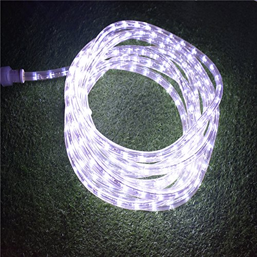18 Cool White Led Indoor/Outdoor Christmas Rope Lights in Florida - 8