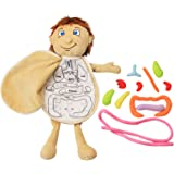 3D Organ Toy Set, Human Body Anatomy Awareness Teaching Tools, Preschool Educational Organ Plush Toys, Science Learning Kits