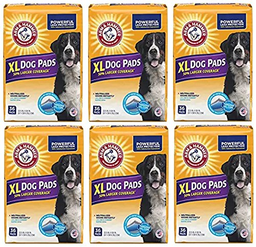 Arm & Hammer Large Pet Training and Puppy Pads 22.5-inch by 30-inch, 36-Count (6 Pack)