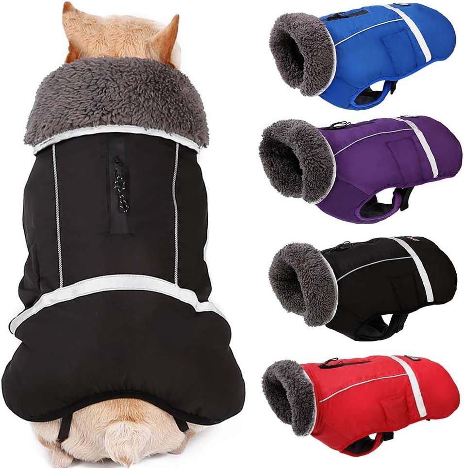 PJDDP Dog Jacket Winter Coat Clothes Reflective Popular brand wit Warm Classic