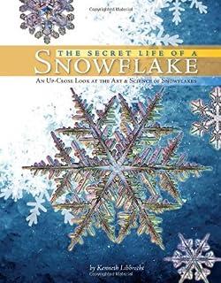 Snowflakes book