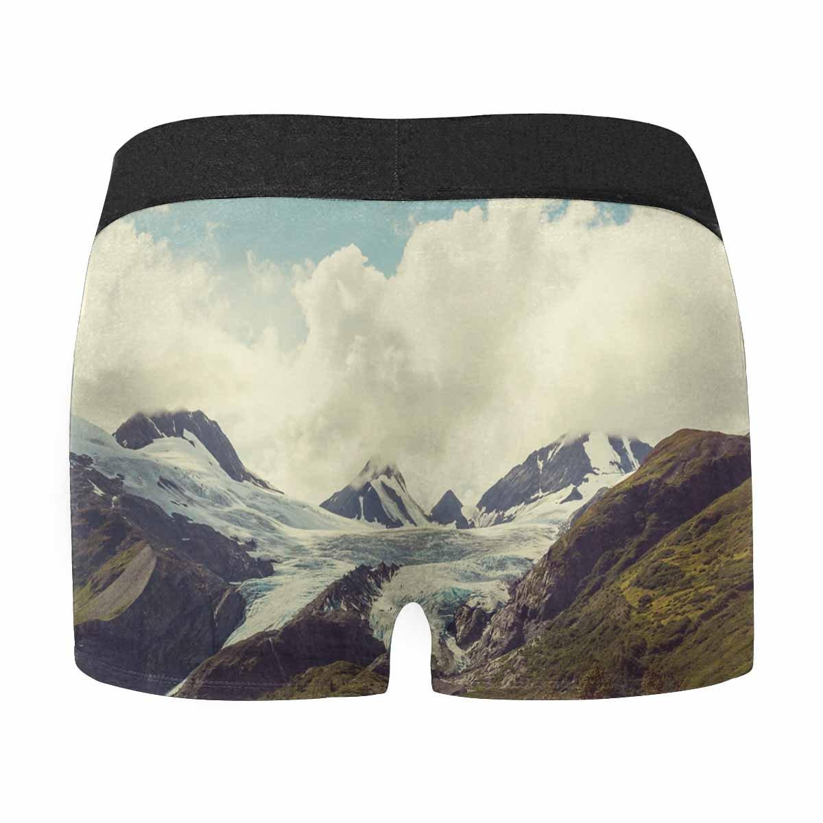 INTERESTPRINT Custom Mens Boxer Briefs Mountains of Alaska in Summer XS-3XL