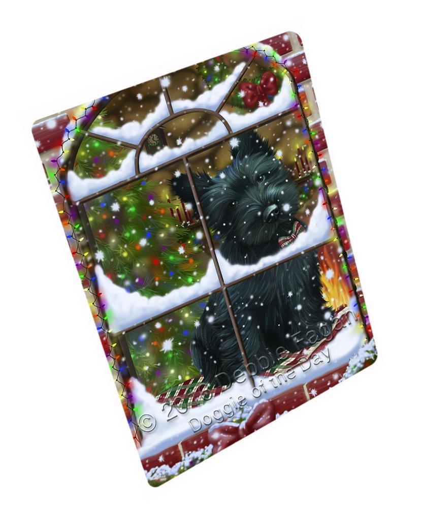 Please Come Home For Christmas Scottish Terrier Dog Sitting In Window Art Portrait Print Woven Throw Sherpa Plush Fleece Blanket (60x80 Fleece)