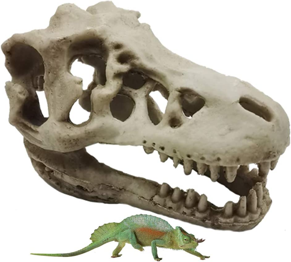 Hamiledyi Aquarium Decor Resin Artificial Dinosaur Skull Head Skeleton Ornament Fish Tank Decoration Cave Landscape Reptile House