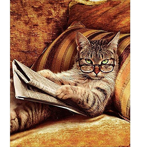 (Fairylove 40×50 Paint by Numbers for Adults DIY Oil Painting, Reading Cat)
