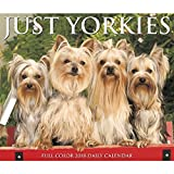 Just Yorkies 2018 Daily Desk Boxed Calendar