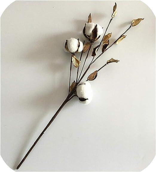 Ramo de Flores secas de algodón de Maja Shop, Rama Larga de ...