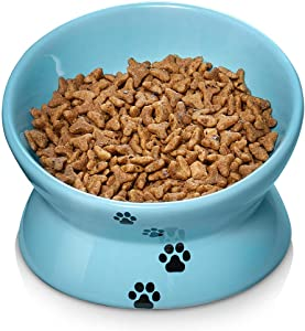Y YHY Elevated Cat Food Bowl, Ceramic Raised Cat Bowl, Tilt Angle Protect Cat's Spine, Anti Vomiting Cat Dish, Backflow Prevention, Lake Blue