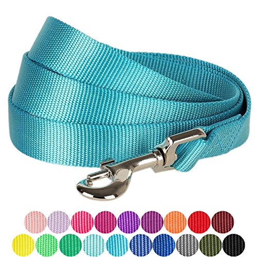 Aqua Leash - Blueberry Pet 19 Colors Durable Classic Dog Leash 5 ft x 3/4