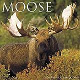 Moose 2018 Calendar