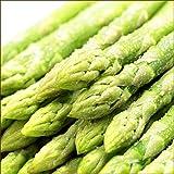 北海道産 アスパラ グリーンアスパラ (L-2Lサイズ/600g) ハウス栽培 アスパラガス