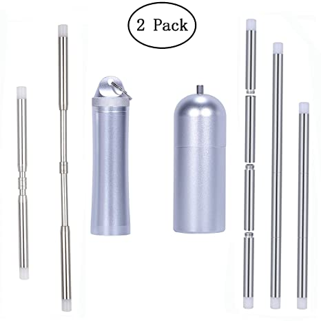 Reusable Straws Collapsible Stainless Steel Straws Retractable and  Expandable Metal Drink Foldable Straw Keychain Case with Cleaning Brush(2  Pack)