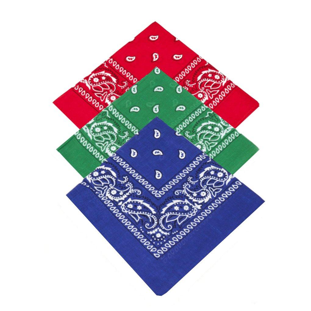Buckingham Boutique Herren Taschentuch Rot/Grün/Blau onesize