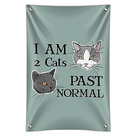 Two Cats Past - Cartel de oficina para el hogar: Amazon.es ...