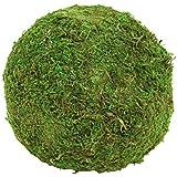 Koyal 6-Pack Green Moss Balls, 8-Inch