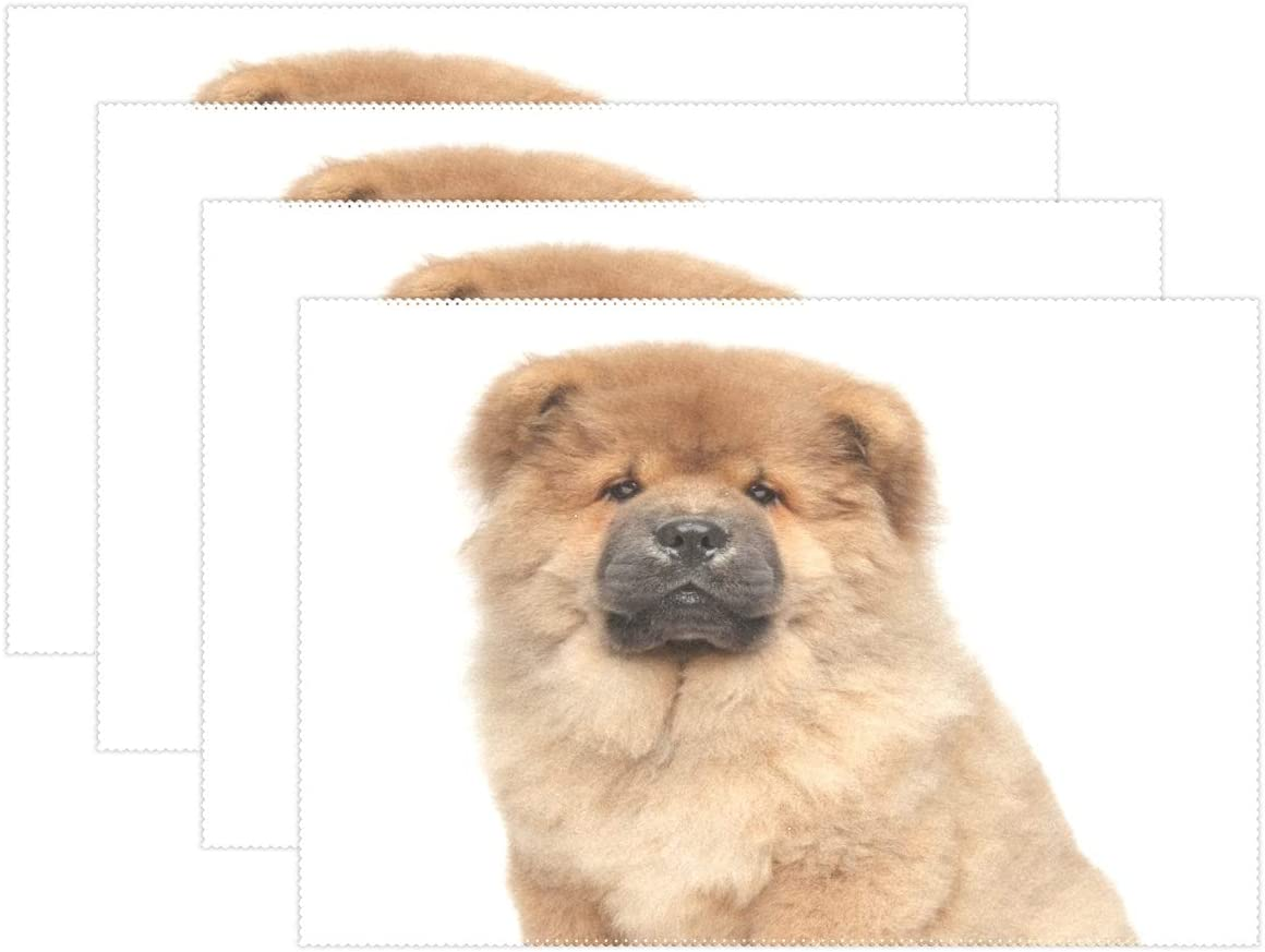 Amazon Com Tropicallife Chow Chow Puppy Dog Place Mats Non Slip Table Placemats Washable Heat Resistant For Home Kitchen Dining Table Decoration Set Of 6 Home Kitchen