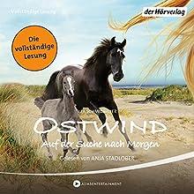 Ostwind: Auf der Suche nach Morgen (Ostwind 4) Hörbuch von Lea Schmidbauer Gesprochen von: Anja Stadlober