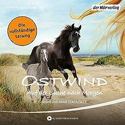Ostwind: Auf der Suche nach Morgen (Ostwind 4)