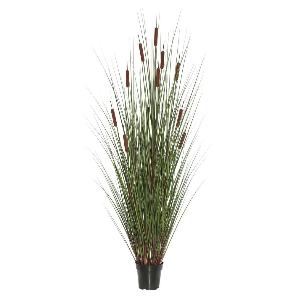Vickerman TN170336 Everyday Grass Plant