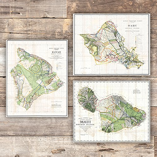 Vintage Hawaii Survey Maps Art Prints (Set of 3) - Unframed - 8x10s - Hawaii Fine Art