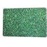 C&Q Doormat, Embroidered Entry Way Indoor Mat, Non-Slip Doormat Entrance Rug Floor Mats for Home Clean, Indoor/Outdoor/ Front Door/Kitchen/ Bathroom Mats, Bedroom Doormat