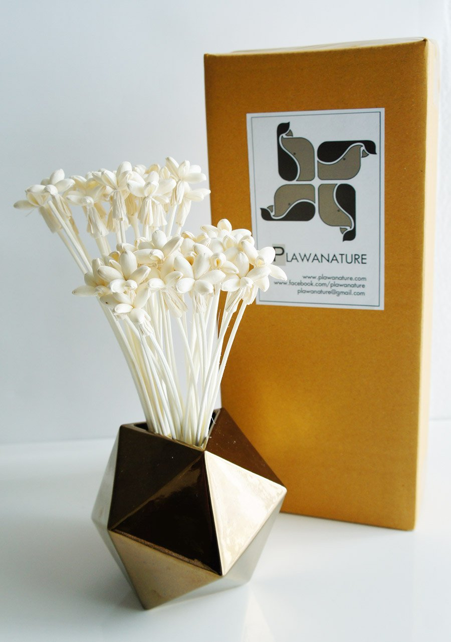 Exotic Plawanature Set of 40 Mini Night Jasmine Sola Wood Flower with Reed Diffuser for Home Fragrance Aroma Oil.