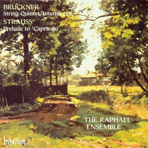 Prelude to Capriccio / String Quintet