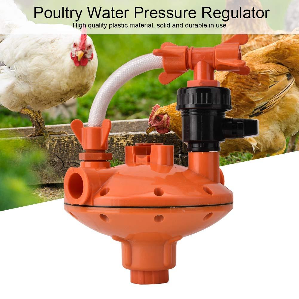 Square Tube Pressure regulating Valve regulador de presi/ón de Agua de alimentaci/ón de Aves de Corral V/álvula de descompresi/ón de Bebida Pollo Jadpes Regulador de presi/ón del alimentador