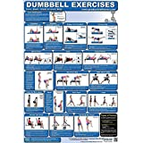 Fitness Poster – Back And Core Dumbbell Exercises (Laminated) Review