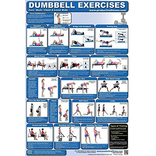 Fitness Poster Dumbbell Exercises Laminated product image
