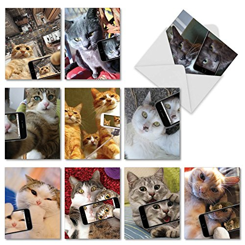 Cats Selfie: 10 Assorted Box of Blank Note Cards with Cats Having Fun with Mobile Phone Camera, Includes White Envelopes | (Phone Cards Set)