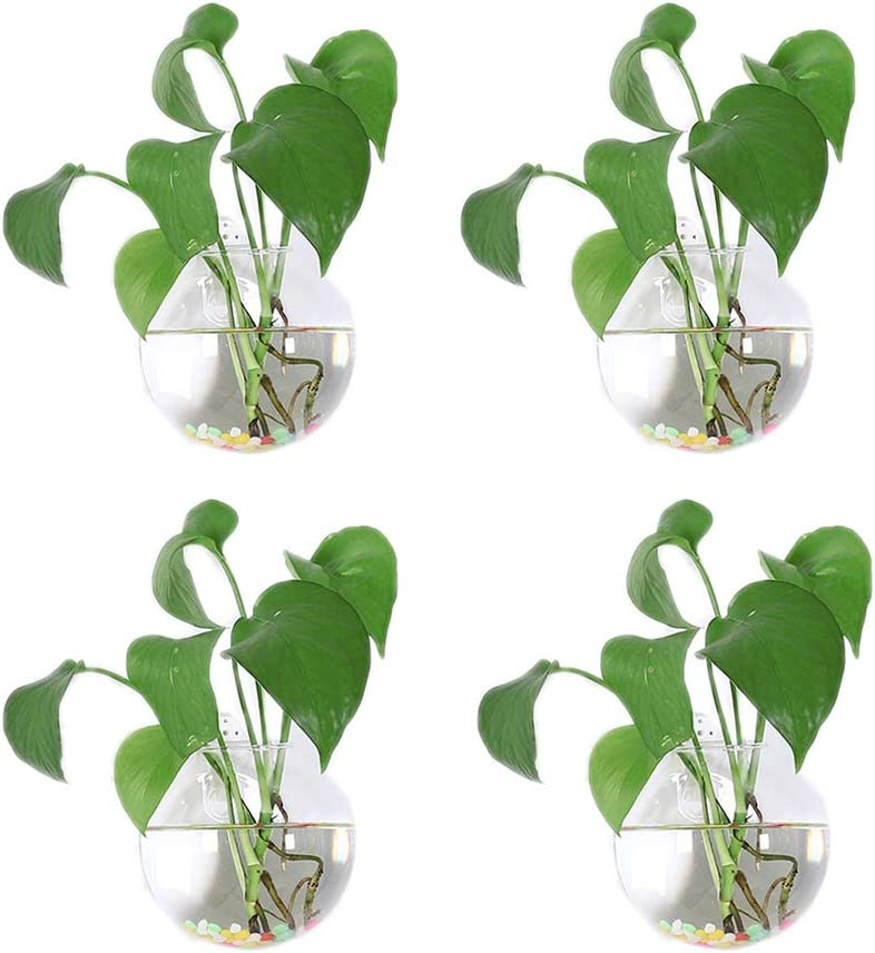 Glass Wall Planters for Indoor Plants 4Pcs Hemispherical 3.94'' Modern Hanging Terrarium Air Plant Holder Propagation Stations Pots with Water Beads Container Flower Vase for Home Office Wedding Decor