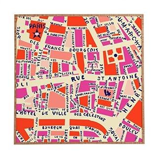Deny Designs Holli Zollinger Paris Map Pink Framed Wall Art, Medium
