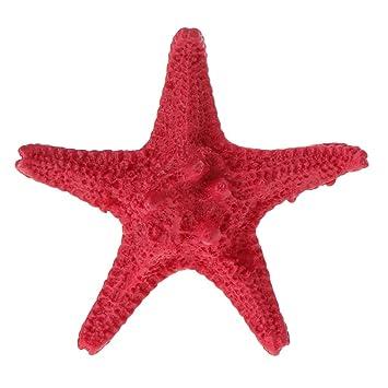 LANDUM - Decoración para Acuario, Resina Dura, diseño de Estrella de mar Artificial, 5 Colores, Resina, Rojo, Length: 5.5cm(2.17in): Amazon.es: Hogar
