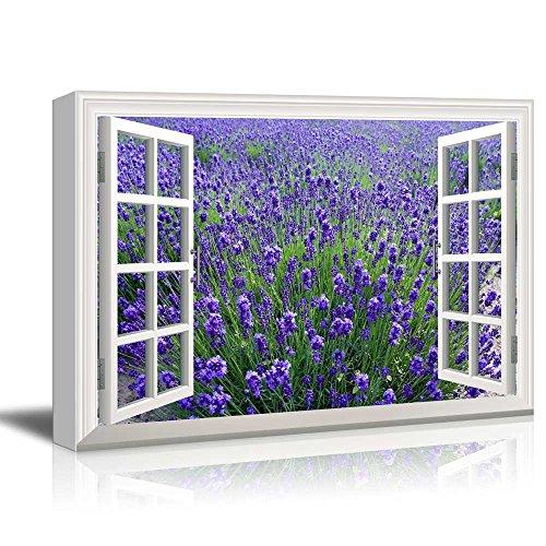 Creative Window View Lavender Field