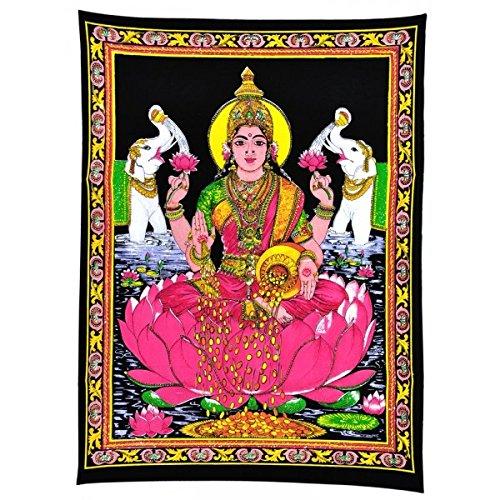 lakshmi pictures - 7
