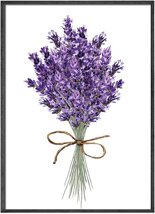 Amazon Com Cuadros Lavender Flowers Wall Art Poster Modern Canvas