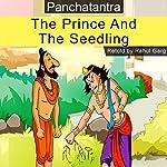 The Prince and the Seedling | Rahul Garg