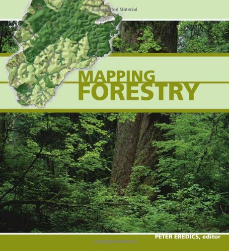Read Online Mapping Forestry (Mapping Industries) ebook