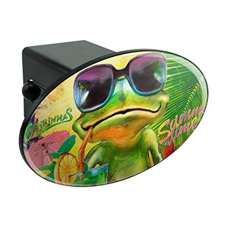 Amazon.com: Graphics and More Summertime Vacation Frog Oval ...