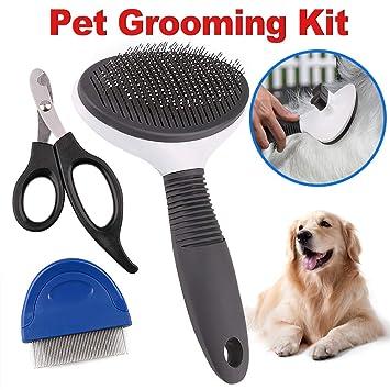Amazon.com: Kit de limpieza 3 en 1 para perros, juego de 3 ...