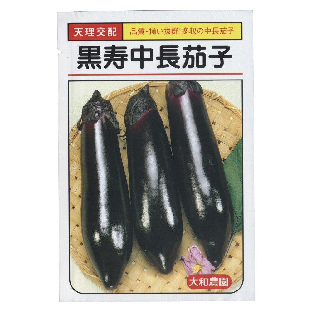 大和農園 黒寿中長 [なす茄子] 20ml B019OH5DCE