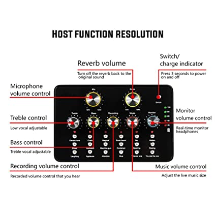 Diuspeed Portable Tarjeta de Sonido, V10 USB Audio Micrófono portátil Tarjeta de Sonido Internet Entretenimiento Personal Streaming Live Sonido anwend Bar ...