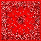 ZANheadgear Red Paisley Premium Bandanna