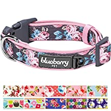 "Blueberry Pet Soft & Comfy Welcoming Spring Rose Flower Prints Girly Padded Dog Collar, Large, Neck 18""-26"", Adjustable Collars for Dogs"
