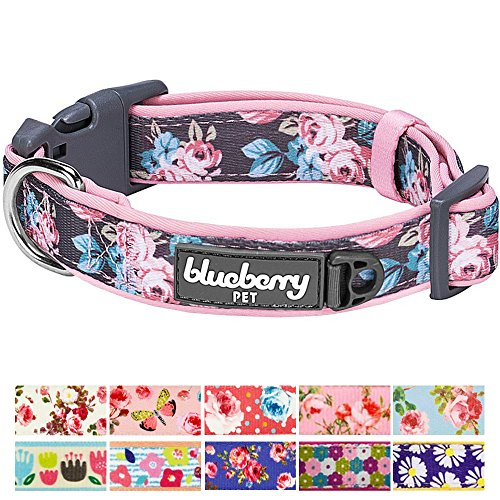 Blueberry Pet 11 Patterns Soft & Comfy Welcoming Spring Rose Flower Prints Girly Padded Dog Collar, Medium, Neck 14.5
