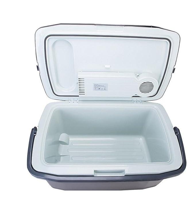 Amazon.es: HSDMWJD - Frigorífico para Coche (45 L, frigorífico y ...