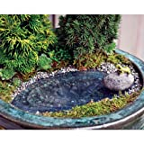 Cheap Fairy Garden Frog Pond